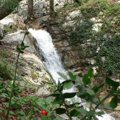 riserva naturale la valle delle ferriere
